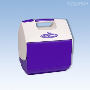 Cool-Box Isolierte Kunststoffbox